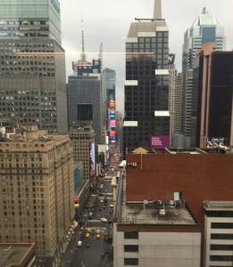 CCRM NY window view